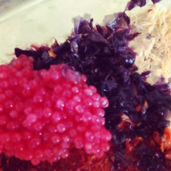 lump-algues-rillettes-maquereaux