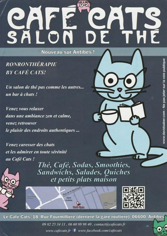 cafe-cats-salon-de-the-antibes